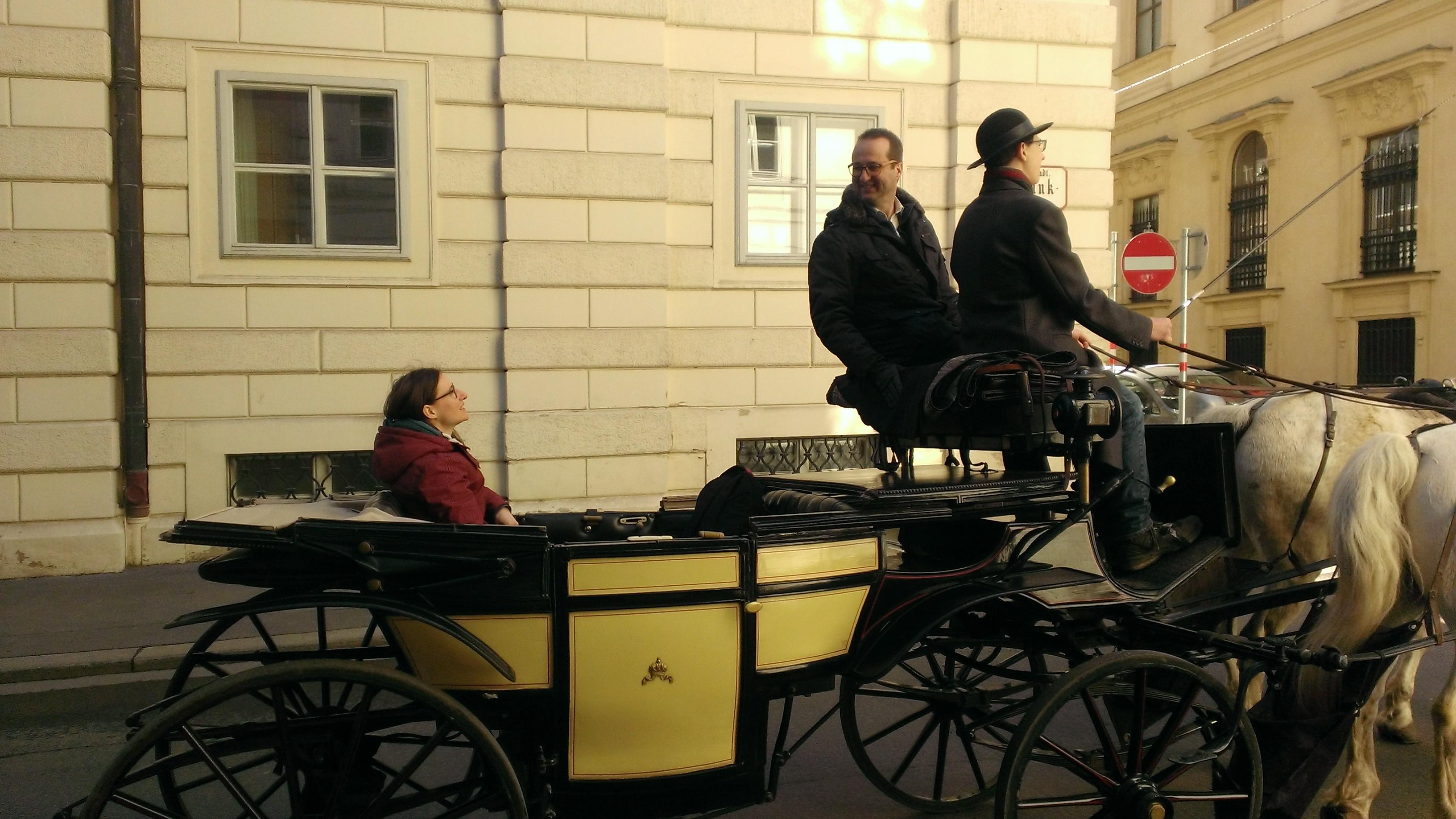 Fahrstunde bei Fiaker Wien
